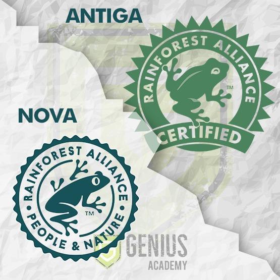 Norma Rainforest Alliance 2020